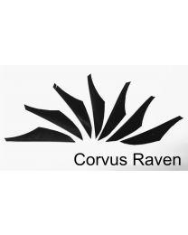 Feder gestanzt alle Farben Corvus RAVEN Naturfeder rw