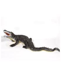 Franzbogen Alligator gross IFAA 3