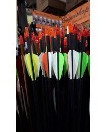 Carbonpfeil Anfängerpfeil für Kinder und Jugendliche mit Plastic Fletches